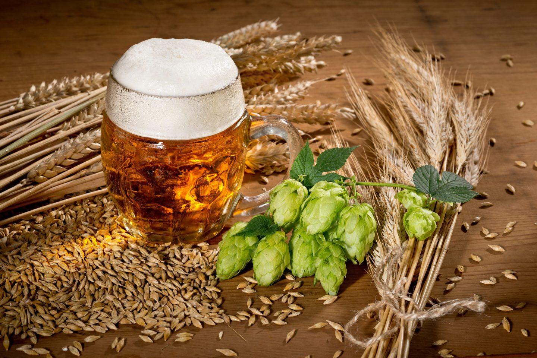 Ist Bier Gesund